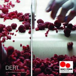 docintour2017-Dert